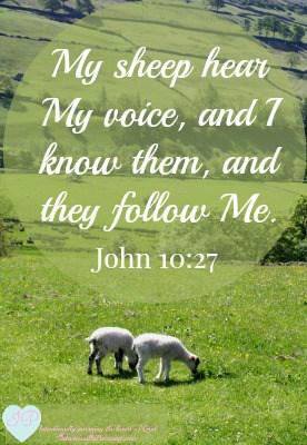 John 10:27 - Hearing His Voice - IntentionallyPursuing.com